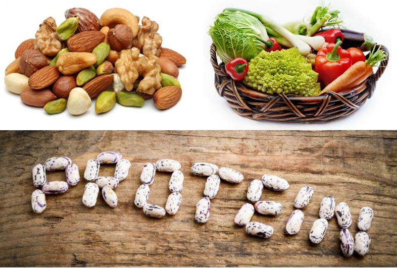 غذای های حاوی پروتئین که باید بخورید